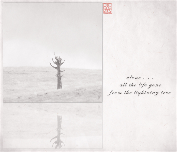 'alone... / all the life gone / from the lightning tree' by Ron Moss
