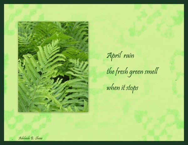 'April rain / the fresh green smell / when it stops' by Adelaide Shaw