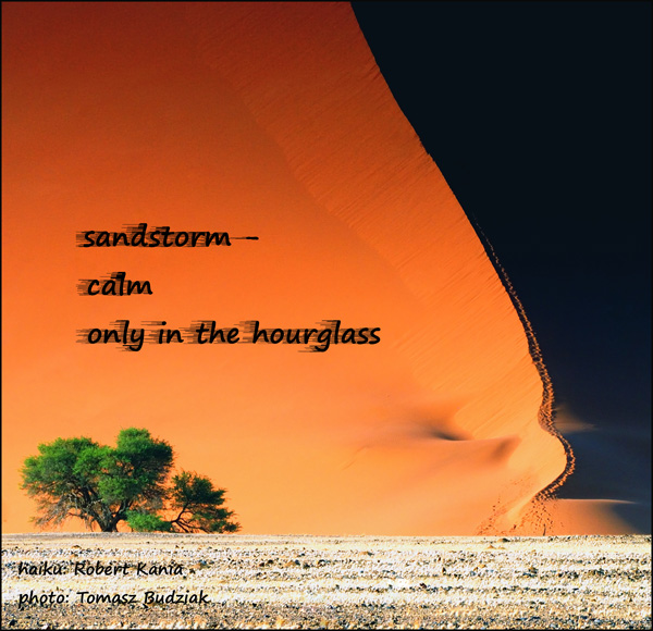 'sandstorm� / calm / only in the hourglass' by Robert Kania. Art by Tomaz  Budziak.