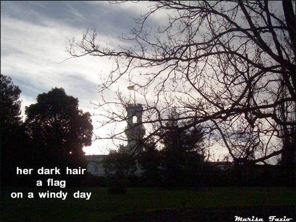 'her dark hair / a flag / on a windy day' by Marisa Fazio