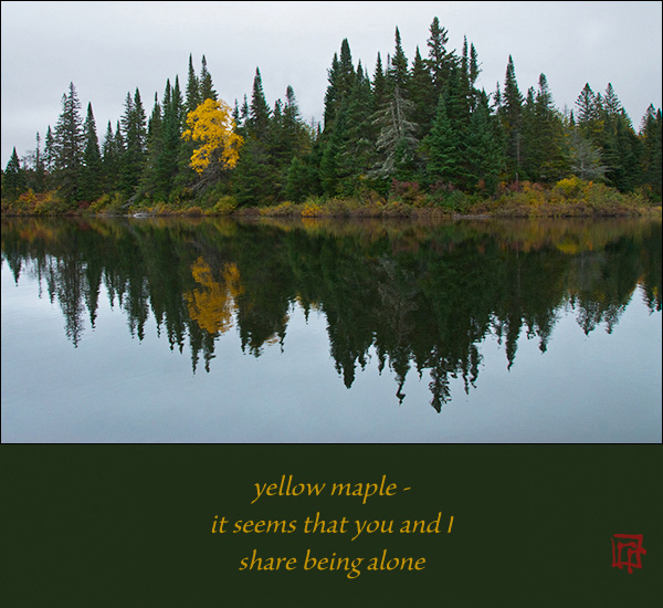 'yellow maple� / it seems that you and I / share being alone' by Ray Rasmussen