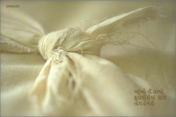 'wrapped  /in furoshiki / winter sunshine' by Perpoto
