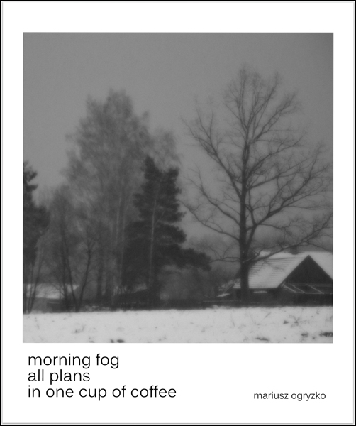 'morning fog / all plans / in one cup of coffee' by Mariusz Ogryzko