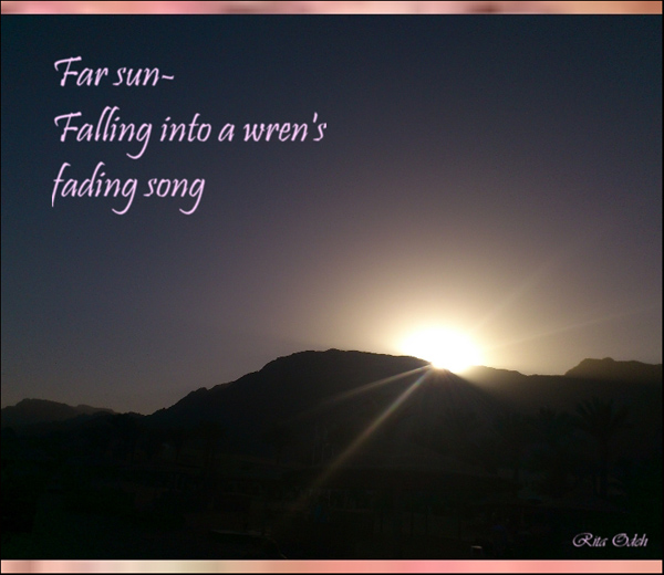 'Far sun� / Falling into a wren's  / fading song' by Rita Odeh