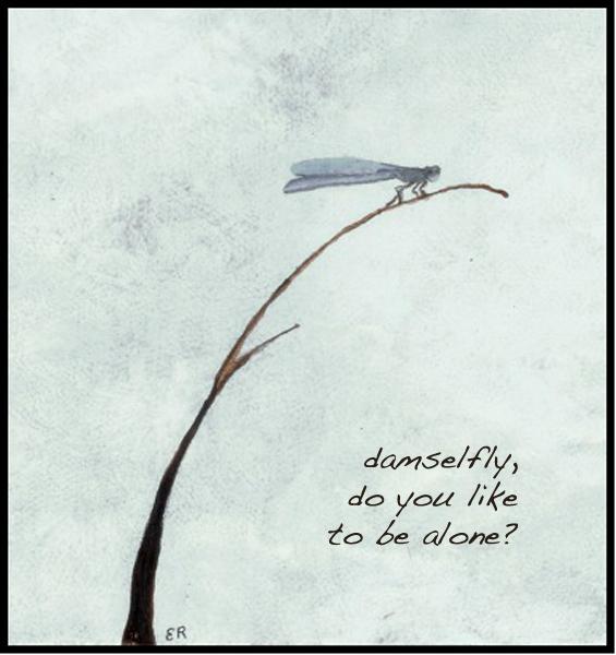 "'damselfly,  /do you like / to be alone?"" by Emily Romano"