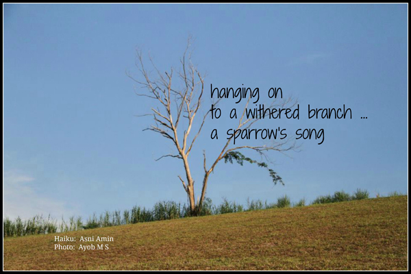 'hanging on / to a withered branch... / a sparrow's song' by Asni Amin.  Art by MS Ayob.