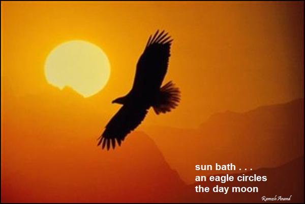 'sun bath / an eagle circles / the day moon' by Ramesh Anand