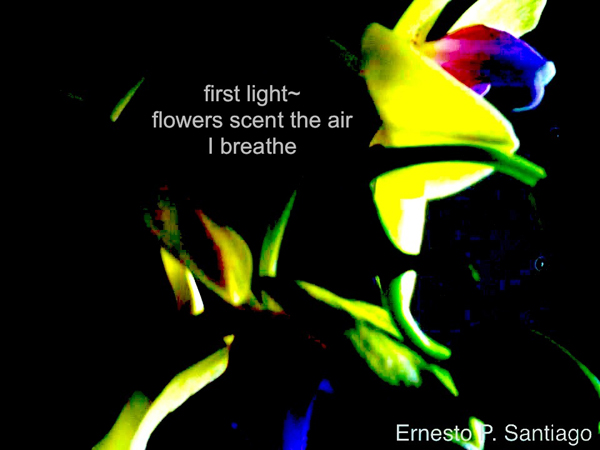 """first light~ / flowers scent the air / I breathe' by Ernesto Santiago"