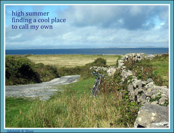 'high summer / finding a cool place / to call my own' by Adelaide Shaw