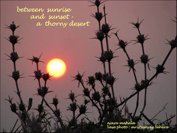 'between sunrise / and sunset� / thorny desert' by Ajaya Mahala. Art by Mrutyunjay Behera
