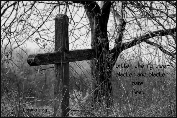 'bitter cherry tree— / blacker and blacker /  bare feet' by Lavana Kray
