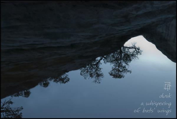 'dusk / a whispering / of bat's wings' by Ray Rasmussen.