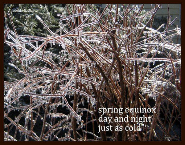 'spring equinox / day and night / just as cold' by Adelaide Shaw