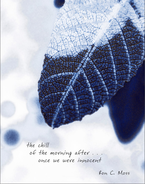 'the chill / of the morning after... / once we were innocent' by Ron Moss