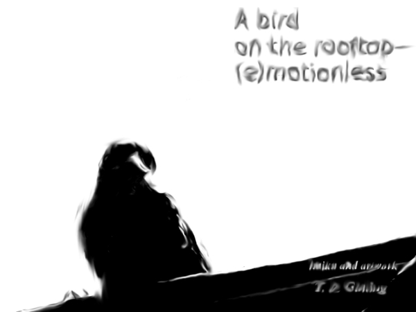 """' a bird / on the rooftop� / (e) motionless"""" by Tomy Ginting"""