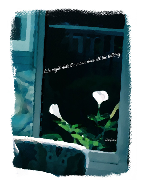 'late night date the moon does all the talking' by Barbara Kaufmann