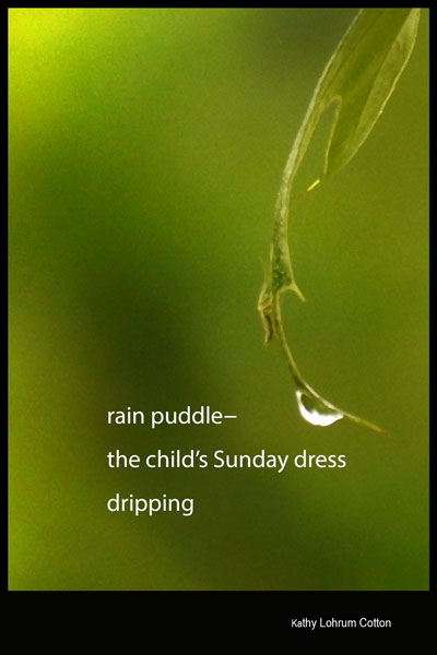 'rain puddle� / the child's Sunday dress / dripping' by Kathy Lohrum Cotton