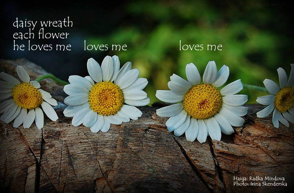 'daisy wreath / each flower / he loves me / loves me / loves me' by Radka Mindova. Art by Irina Skenderska