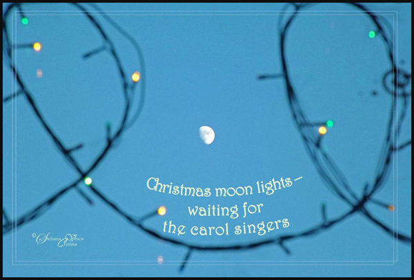 'Christmas moon lights� / waiting for the carol singers' by Steliana Voicu