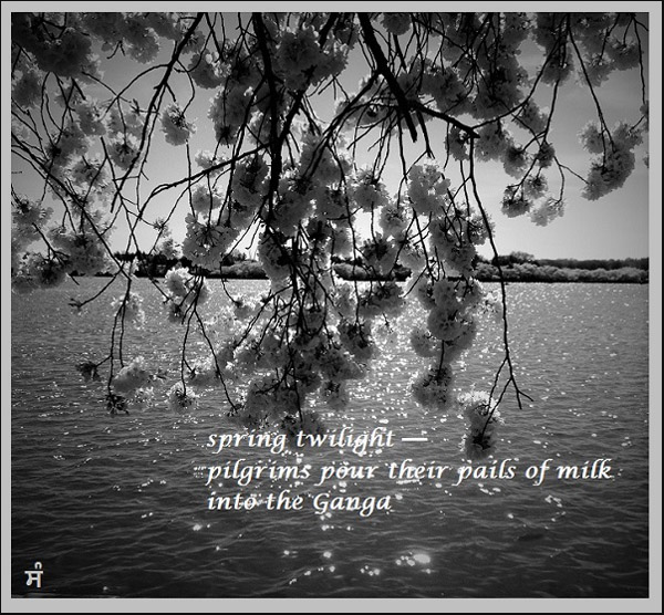 'spring twilight� / pilgrims pour their pails of milk / into the Ganga' by Sandip Chauhan