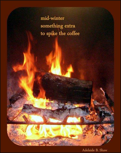 'mid-winter / something extra / to spike the coffee' by Adelaide Shaw