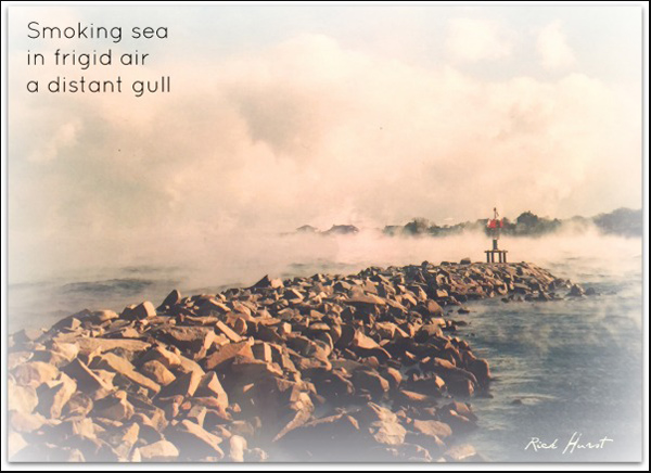 'smoking sea / in frigid air / a distant gull' by Rick Hurst