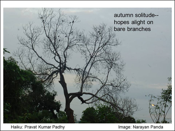 'autumn solitude / hopes alight on / bare branches' by Pravat Kumar Padhy. Art by Narayan Panda