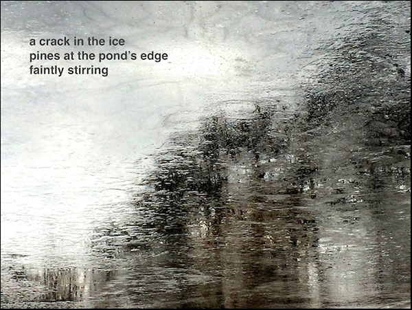 'a crack in the ice / pines at the pond's edge / faintly stirring' by Doug Norris