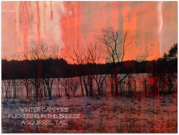 'winter campfire / flickering in the breeze / a squirrel tail' by Rick Hurst