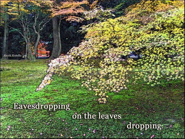 """'Eavesdropping / on the leves / dropping."""" by Alexis Rotella. Haiku first published in The MET Press, 2007."""