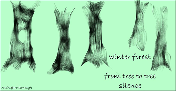 'winter forest / from tree to tree / silence' by Andrzej Dembonczyk