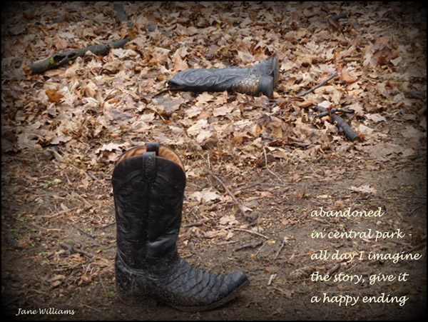 'abandoned / in central park� / all day I imagine / the story, give it / a happy ending' by Jane Williams