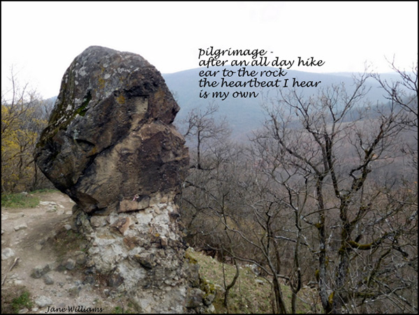'pilgrimage� / after an all day hike / ear to the rock / the heartbeat I hear / is my own' by Jane Williams