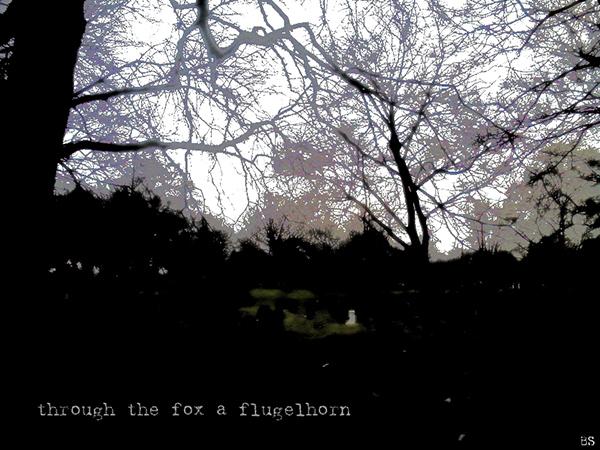 'through the fox a flugelhorn' by Brendan Slater
