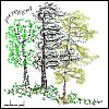 "'poetreetop"" by Marianne Paul"