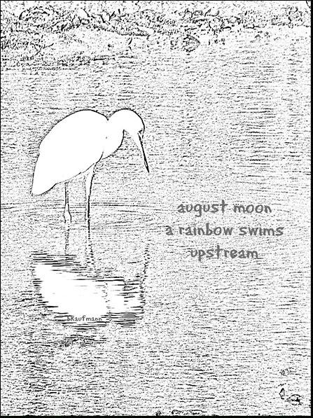 'august moon / a rainbow swims / upstream' by Barbara Kaufmann