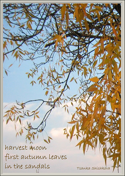 'harvest moon / first autumn leaves / in the sandals' by Tsanka Shishkova