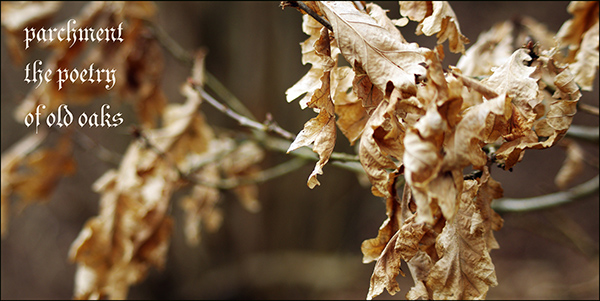 """""""parchment / the poetry / of old leaves' by Anna Maris. Art by Chris Maris."""