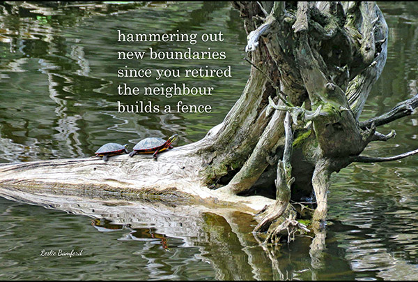 'hammering out / new boundries / since you retired / the neighbour / builds a fence' by Leslie Bamford
