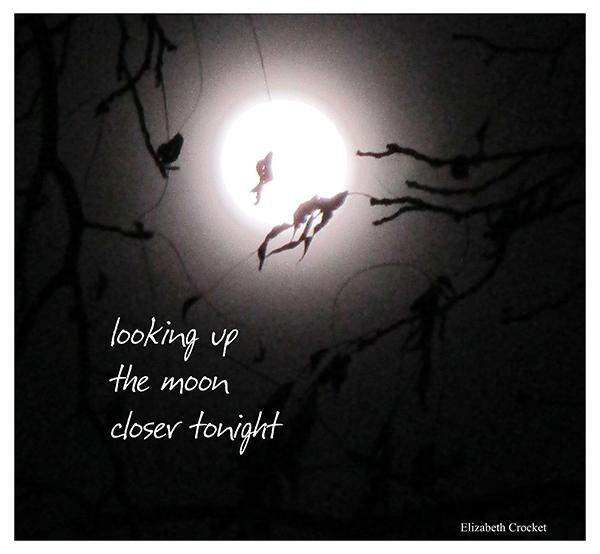 'looking up / the moon / closer tonight' by Elizabeth Crocket