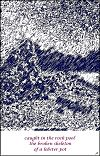 'caught in the rock pool / the broken skeleton / of a lobster pot' by John Hawkhead.