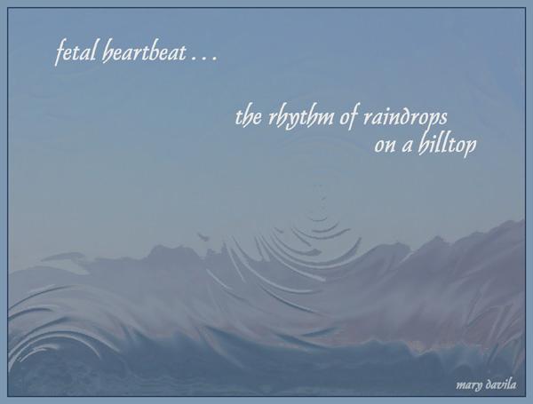 'fetal heartbeat... / the rhythm of raindrops  / on a hilltop' by Mary Davila