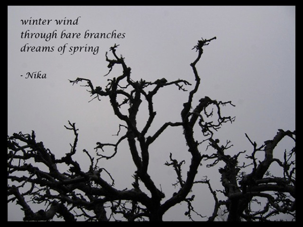 """""""winter wind / through bare branches / dreams of spring' by Nika."""