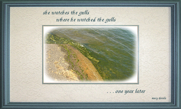 "'she watches the gulls / where he watched the gulls / ...one year later"" by Mary Davila"