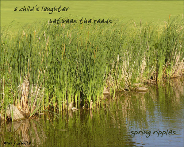 'a child's laughter / between the reeds / spring ripples' by Mary Davila