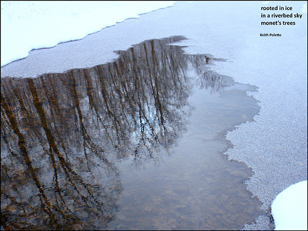 rooted in ice / in a riverbed sky / monet's trees' by Keith Polette