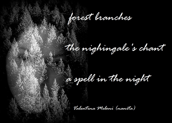 'forest branches / the nightingale's chant / a spell in the night' by Valentina Meloni