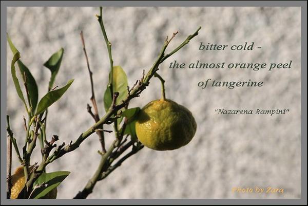 'bitter cold� / the almost orange peel / of tangerine' by Nazarena Rampini