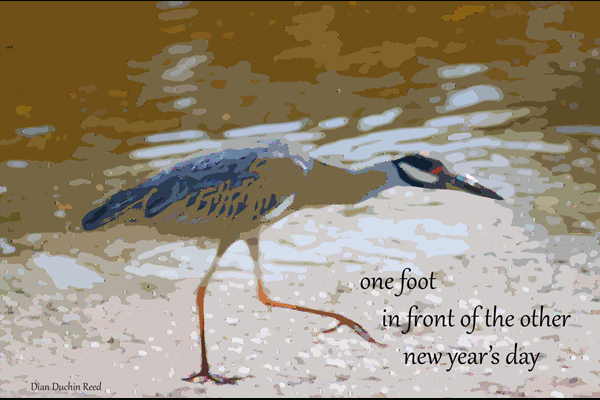 'one foot /  in front of the other /new year's day' by Dian Duchin Reed