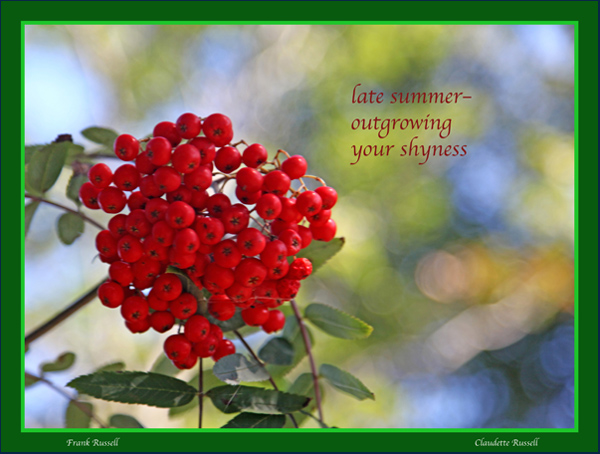'late summer�  outgrowing / your shyness' by Claudette and Frank Russell
